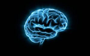 Мозг человека пытается управлять пальцами даже после их ампутации