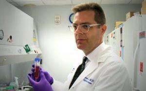 Антитела против вируса Зика успешно справились с инфекцией