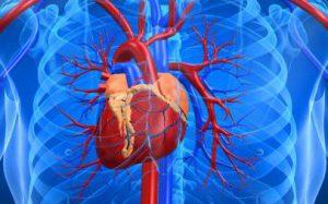 Интернет поможет в лечении инфаркта