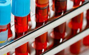 Ученые: у людей появились новые группы крови