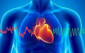 Эти несложные действия предупредят инфаркт