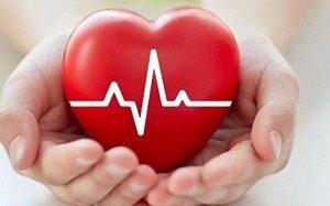 Исследователи нашли идеальный продукт для сердца