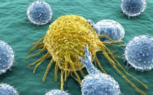Самонаводящиеся клетки помогают лечить рак