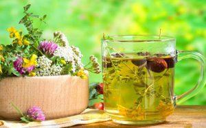 Лечебные травы и фитосборы при диабете