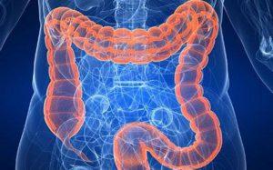 Как улучшить работу кишечника?
