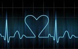 УЗИ сердца: подготовка к исследованию, расшифровка