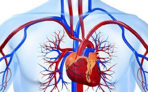 Амилоидоз сердца — редко встречающееся заболевание с неблагоприятным прогнозом и сложной диагностикой
