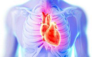Холестерин, который разбивает сердца