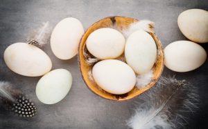 Употребление яиц снижает риск инсульта