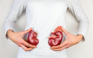Туберкулез почек: симптомы и лечение