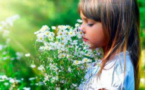 Ароматерапия и стресс — использование эфирных масел