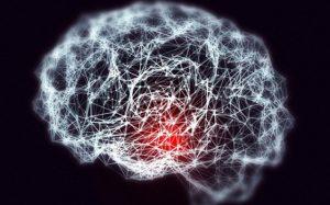 Ожирение может привести к возникновению болезни Альцгеймера