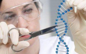 Оправдано ли редактирование генов человеческих эмбрионов?