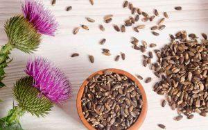 Защита печени: 5 натуральных гепатопротекторов